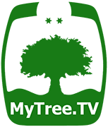 MyTree.TV